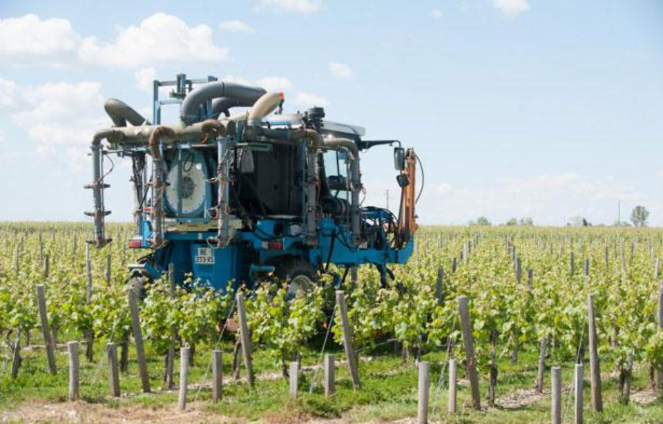 Pesticides<br><b>L'interprofession des vins de Bordeaux parle d'un engagement fort sur le terrain</b>