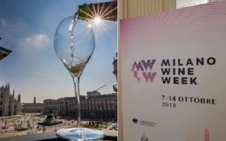 « Cin cin »<br><b>A la 1ère édition de la Milano Wine Week</b>